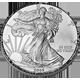 Stříbrná mince American Eagle 2009