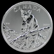 Stříbrná investiční mince Puma Canadian Wildlife 1 Oz 2012