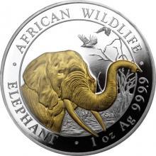 Stříbrná mince pozlacený Slon africký 1 Oz Proof