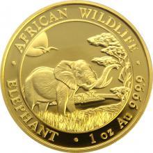 Zlatá investičná minca Slon africký 1 Oz
