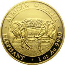 Zlatá investiční mince Slon africký Somálsko 1 Oz 2020