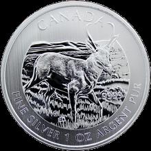 Strieborná investičná minca Antilopa Canadian Wildlife 1 Oz 2013