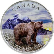 Stříbrná mince kolorovaný Grizzly Canadian Wildlife 1 Oz 2011 Standard