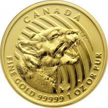 Zlatá investiční mince Growling Cougar 1 Oz 2015 (.99999)