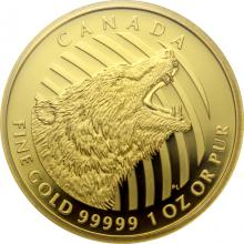 Zlatá minca Roaring Grizzly 1 Oz 2016 Proof (.99999)