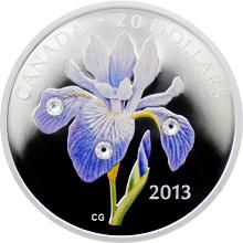 Stříbrná mince Kosatec strakatý 1 Oz 2013 Proof (.9999)