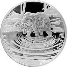 Stříbrná mince Grizzly - Reflections of Wildlife 2016 Proof (.9999)