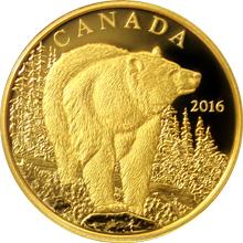 Zlatá minca Medveď baribal 2016 Proof (.99999)