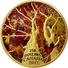 Zlatá minca 2 Oz Klenba javoru: Kaleidoskop bariev 2017 Proof