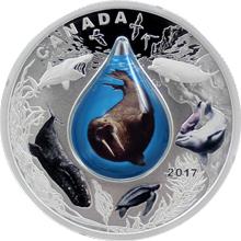 Stříbrná mince Kanadský podmořský život 1 Oz 2017 Proof