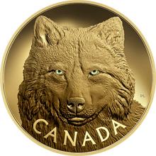 Zlatá minca1 Kg Očima vlka šedého 2017 Proof