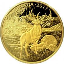 Zlatá mince Majestátní jelen 2017 Proof (.99999)