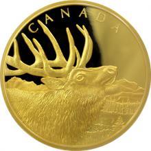 Zlatá minca Elk 500g 2017 Proof