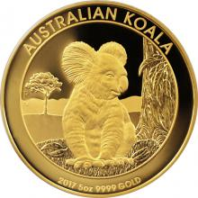 Zlatá mince 5 Oz Koala 2017 Proof