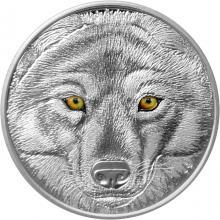 Stříbrná mince očima vlka kanadského 2017 Proof