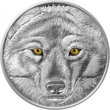 Strieborná minca očami vlka kanadského 2017 Proof