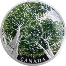 Stříbrná mince 2 Oz Kanadská klenba - Maple Leaf 2018 Proof