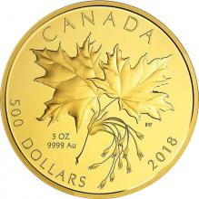 Zlatá minca 5 Oz Maple Leaf 2018 Proof
