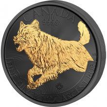Stříbrná mince pozlacený Vlk 1 Oz Golden Enigma 2018 Standard