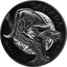 Stříbrná pokovená mince Puma americká 1 Oz Nocturnal by Nature 2018 Proof