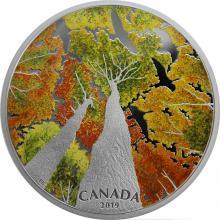 Stříbrná mince 2 Oz Kanadská klenba - The Canada Goose 2019 Proof