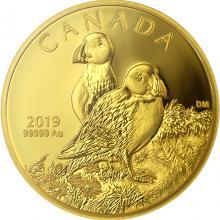 Zlatá mince Papuchalk severní 1 Oz 2019 Proof