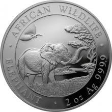 Strieborná investičná minca Slon africký Somálsko 2 Oz