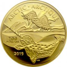 Zlatá minca Arctic - kanadská pobrežie 2019 Proof