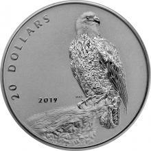 Strieborná mince Udatný - orol bielohlavý 1 Oz Proof 2019