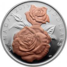 Stříbrná mince Květy růže Queen Elizabeth 1/4 Oz 2019 Proof