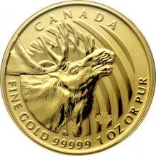 Zlatá investiční mince Moose 1 Oz 2019 (.99999)