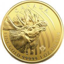 Zlatá investičná minca Moose 1 Oz 2019 (.99999)