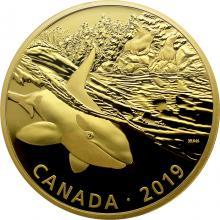 Stříbrná pozlacená mince Predátor a kořist - kosatka a lachtani 2 Oz 2019 Proof