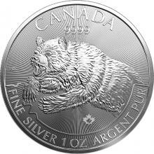 Strieborná investičná minca Grizzly Predator 1 Oz 2019