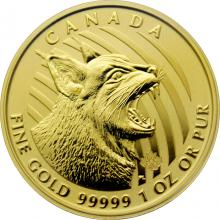 Zlatá investičná minca Bobcat 1 Oz 2020 (.99999)