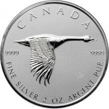 Stříbrná investiční mince Berneška velká 2 Oz 2020