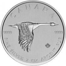 Strieborná investičná minca Bernikla veľká 2 Oz 2020