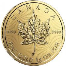 Zlatá investiční mince Maple Leaf 1 g 2020