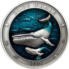 Stříbrná mince 3 Oz Podmořský svět - Plejtvák obrovský 2020 Antique Standard