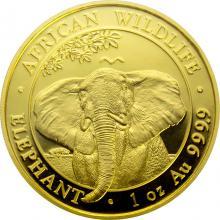 Zlatá investiční mince Slon africký Somálsko 1 Oz 2021