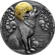 Stříbrná pozlacená mince 2 Oz Vlk obecný 2020 Antique Standard