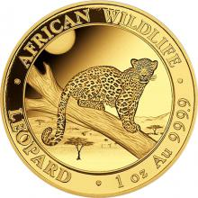 Zlatá investiční mince Leopard Somálsko 1 Oz 2021