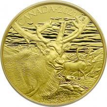 Zlatá mince Karibu 2021 Proof (.99999)