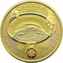 Zlatá investičná minca Zlatá horúčka na Klondiku - Ryžovanie zlata 1 Oz 20211 (.99999)
