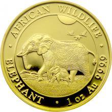 Zlatá investiční mince Slon africký Somálsko 1 Oz 2022
