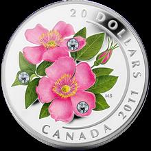 Stříbrná mince Růže 2011 Proof