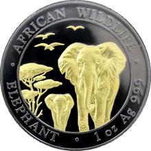 Stříbrná Ruthenium mince pozlacený Slon africký 1 Oz Golden Enigma 2015 Proof