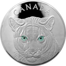 Stříbrná mince 1 Kg Očima pumy 2015 Proof (.9999)