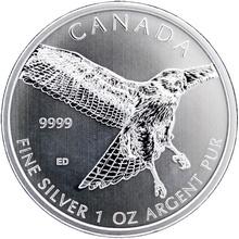 Stříbrná investiční mince Káně rudoocasá Birds of Prey 1 Oz 2015
