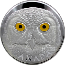 Stříbrná mince 1 Kg Sova sněžná 2014 Proof (.9999)